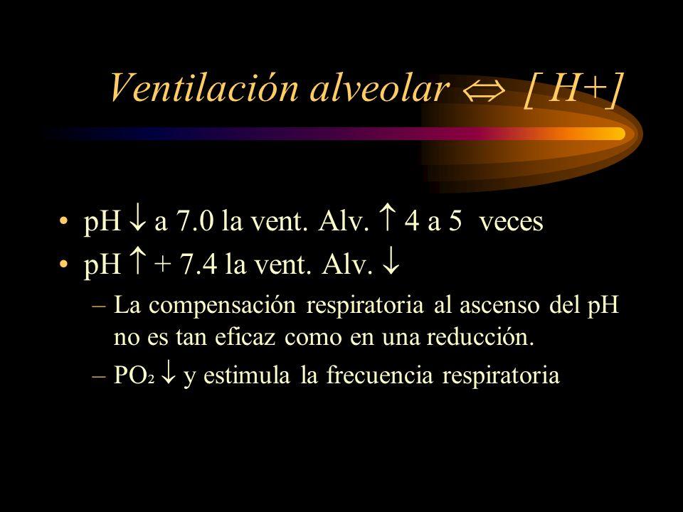 Ventilación alveolar  [ H+]